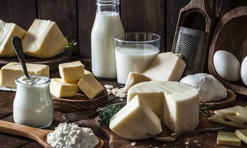 Какую пользу приносят организму молочные продукты?