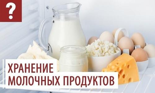 От чего зависит срок хранения молочных продуктов