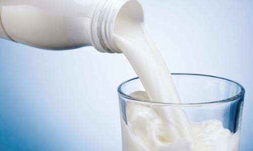Что собой представляет жирность коровьего молока?